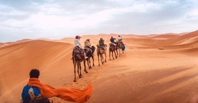 Quiz Morocco camels